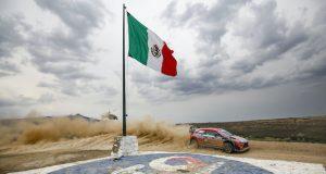 No habrá WRC en 2021 (FOTO: Hyundai Motorsport GmbH)